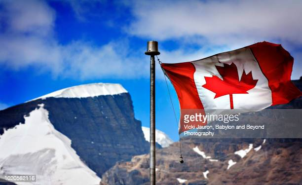 horizontal view of canadian flag against mountains and snow at columbia icefields - columbia icefield stock pictures, royalty-free photos & images