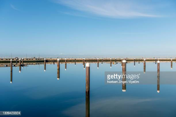 a horizontally perfectly divided image wooden posts perfectly reflected in the absolutely calm water - norbert zingel stock-fotos und bilder