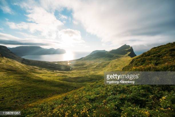 hornbjarg in hornstrandir, iceland - nature reserve stock pictures, royalty-free photos & images