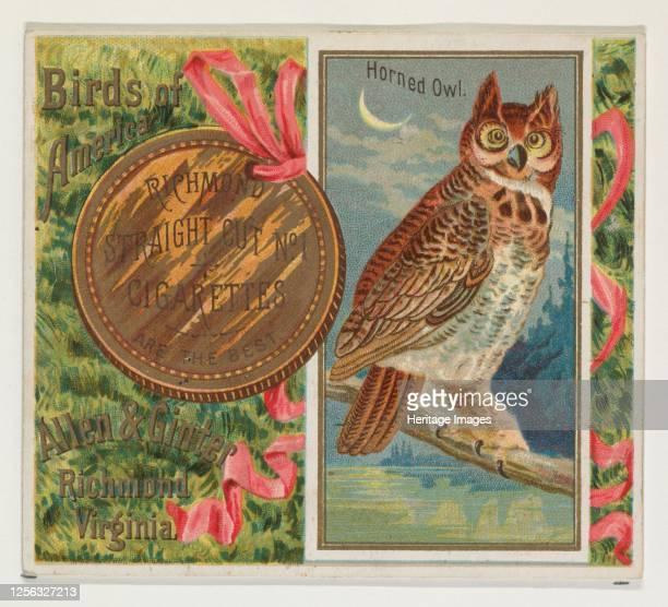Horned Owl, from the Birds of America series for Allen & Ginter Cigarettes, 1888. Artist Allen & Ginter.