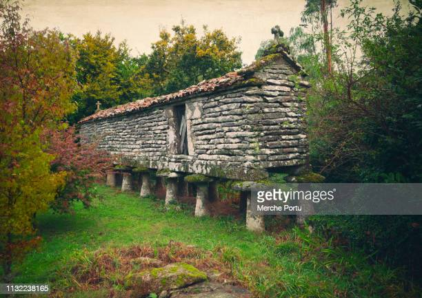 horreo rural construction of galicia - comunidad autónoma de galicia fotografías e imágenes de stock