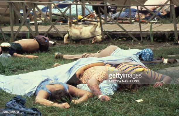 Horrible découverte des corps de plus de 900 adeptes du 'Temple du Peuple' la secte du révérend Jim Jones victimes d'un 'suicide collectif' dans la...