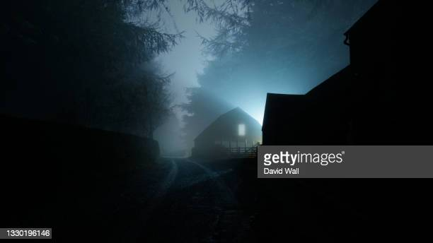 a horror concept of a house with a light in the window. in a spooky forest. on a dark, scary winters night. - window stock pictures, royalty-free photos & images