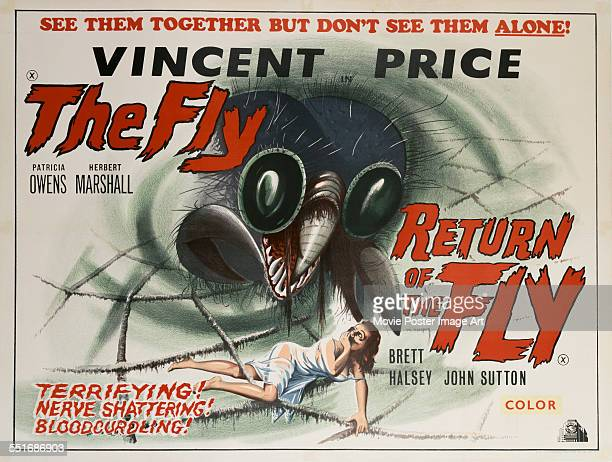 A horror film doublebill poster for Kurt Neumann's 1958 'The Fly' and Edward Bernds' 1959 'Return of the Fly'