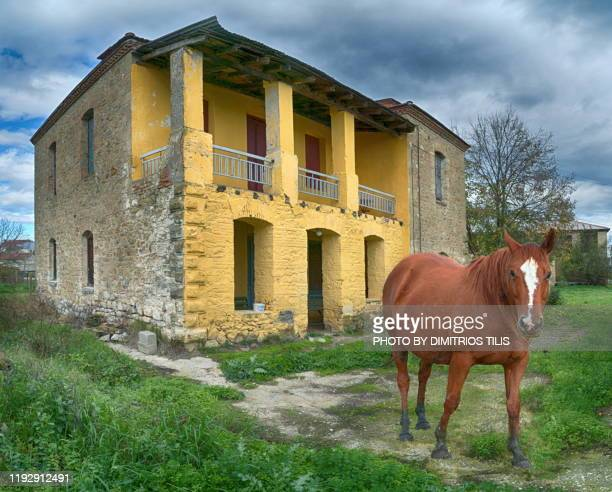 horse abd old mansion house - thessaly stock pictures, royalty-free photos & images