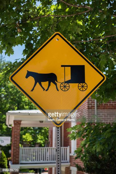 Horse and Buggy Crossing Sign, Lexington, Virginia