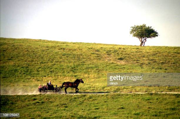 Horse and Buggy on Small Road Along Side of Hill