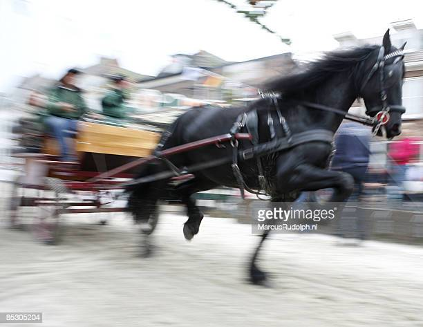 Horse and carriage at full speed