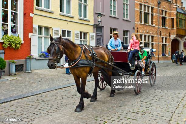 horse and carriage in bruges - arts culture and entertainment stock pictures, royalty-free photos & images