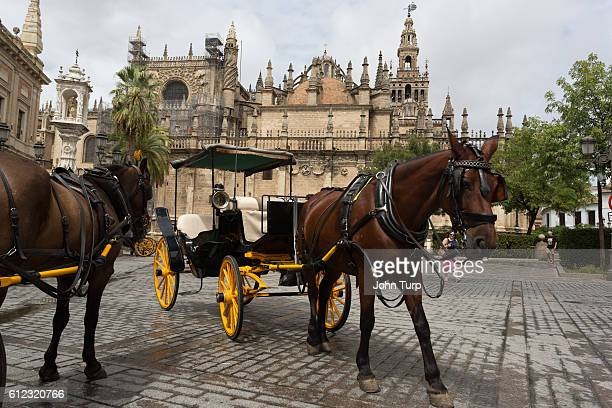 Horse and Carriage in Seville