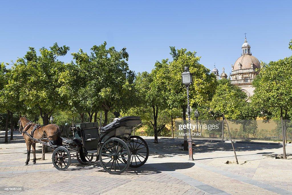 Horse and carriage near Jerez Alcazar : Stock Photo