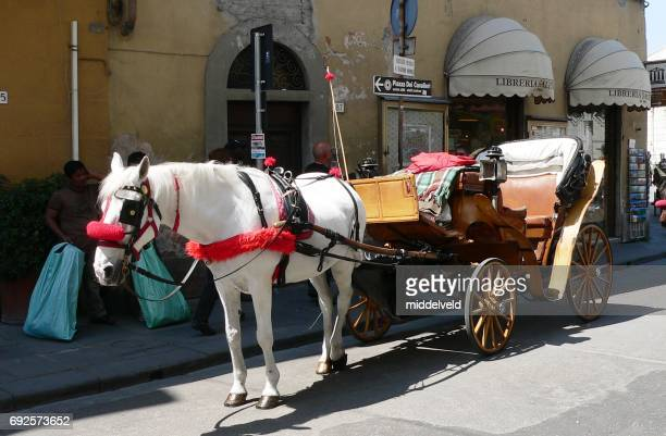 horse and carriage - renault 4 stock photos and pictures