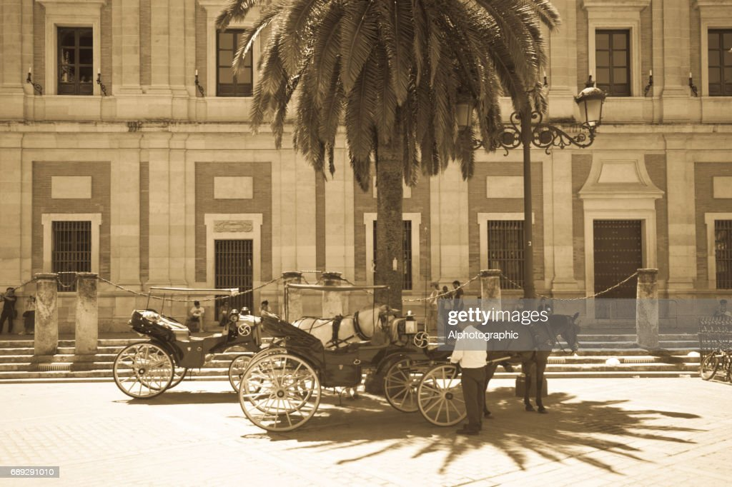 Horse and carriages waiting for tourists : Stock Photo