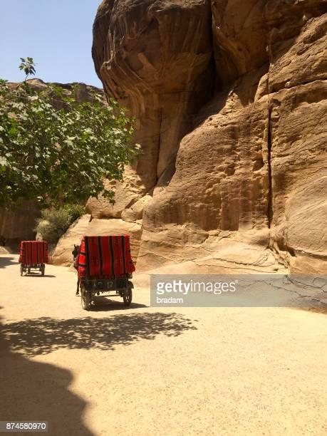 Horse and Cart, Siq, Petra, Jordan