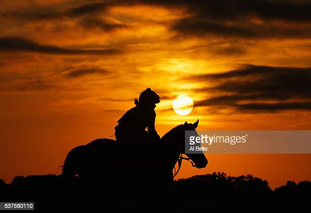 A horse and Exercise Rider train at sunrise prior to the 148th running of the Belmont Stakes at Belmont Park on June 2 2016 in Elmont New York