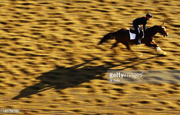 A horse and exercise rider train during a morning workout at Belmont Park on June 5 2012 in Elmont New York
