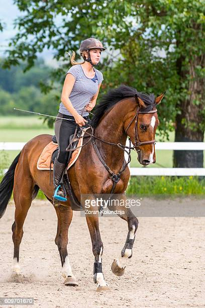 Horse and female rider on training