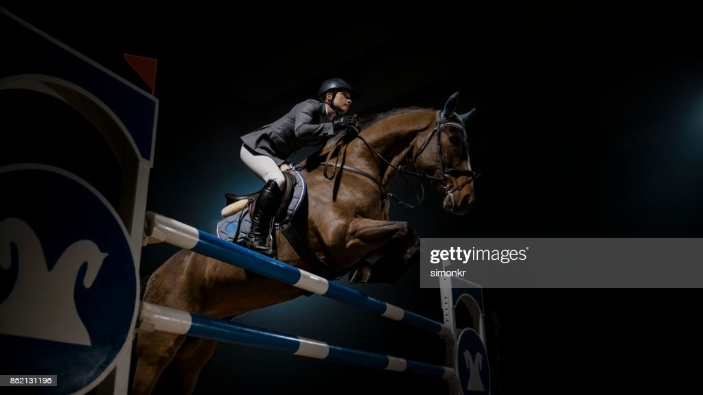 Horse and his rider jumping rail in arena : Stock Photo