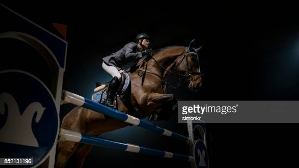 horse and his rider jumping rail in arena - hurdling horse racing stock pictures, royalty-free photos & images