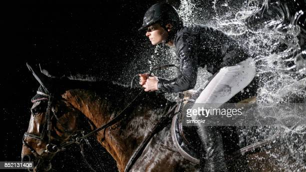 horse and his rider jumping through water curtain - thoroughbred horse stock photos and pictures