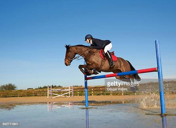 Horse and jockey jumping fence.