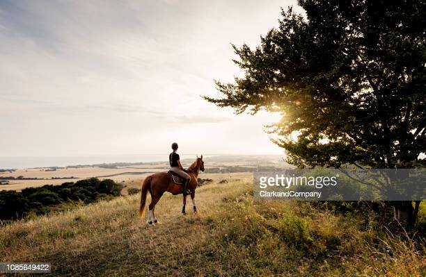 horse and rider admiring the view over møn in denmark. - horseback riding stock pictures, royalty-free photos & images