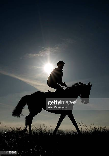 A horse and rider exercise prior to the festival meeting commencing on Tuesday at Cheltenham racecourse on March 11 2012 in Cheltenham England