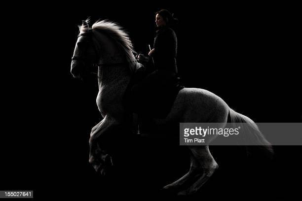 Horse and rider in near sillhouette