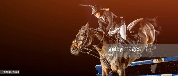 horse and rider jumping over a hurdle - equestrian show jumping stock pictures, royalty-free photos & images