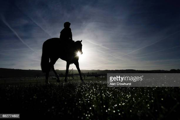 A horse and rider make their way to the gallops as morning dew sits on the grass prior to the upcoming Cheltenham festival starting on Tuesday on...