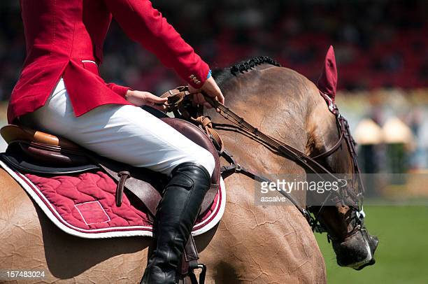 horse and rider on equestrian event
