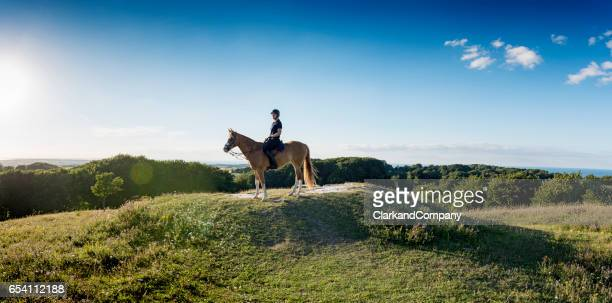 Horse and Rider Pausing At The Top of the Hill