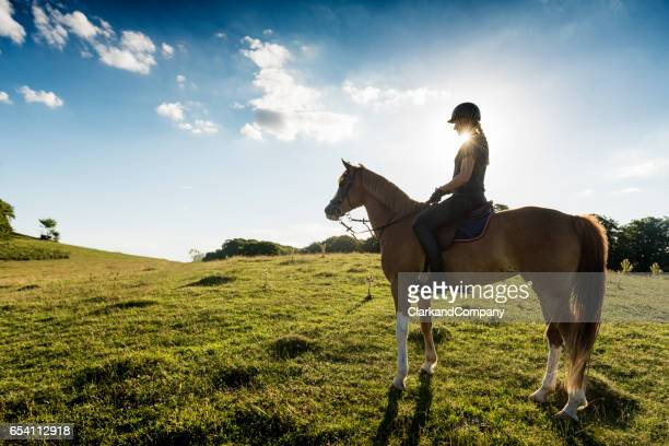 Horse and Rider Standing Proud With Real Sun Flare.