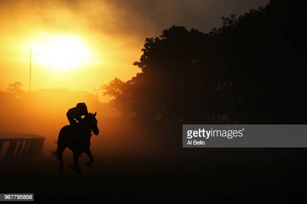 A horse and rider train on the track prior to the 150th running of the Belmont Stakes at Belmont Park on June 5 2018 in Elmont New York