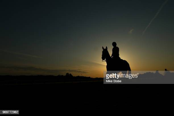 A horse and rider train on the track prior to the 150th running of the Belmont Stakes at Belmont Park on June 8 2018 in Elmont New York