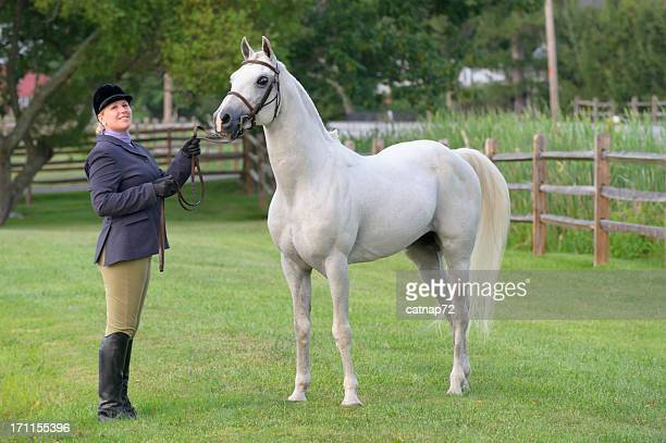 horse and woman in english riding clothes - thoroughbred horse stock photos and pictures