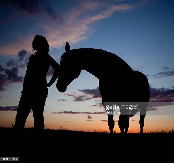 Horse And Woman Silhouette