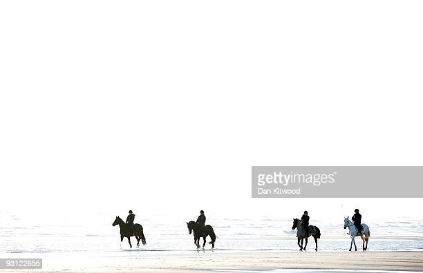 Horse are silhouetted against the sea as they walk along the beach on November 17 2009 in Camber United Kingdom