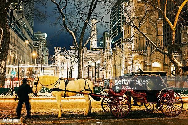 horse carriage and water tower in chicago - koets stockfoto's en -beelden
