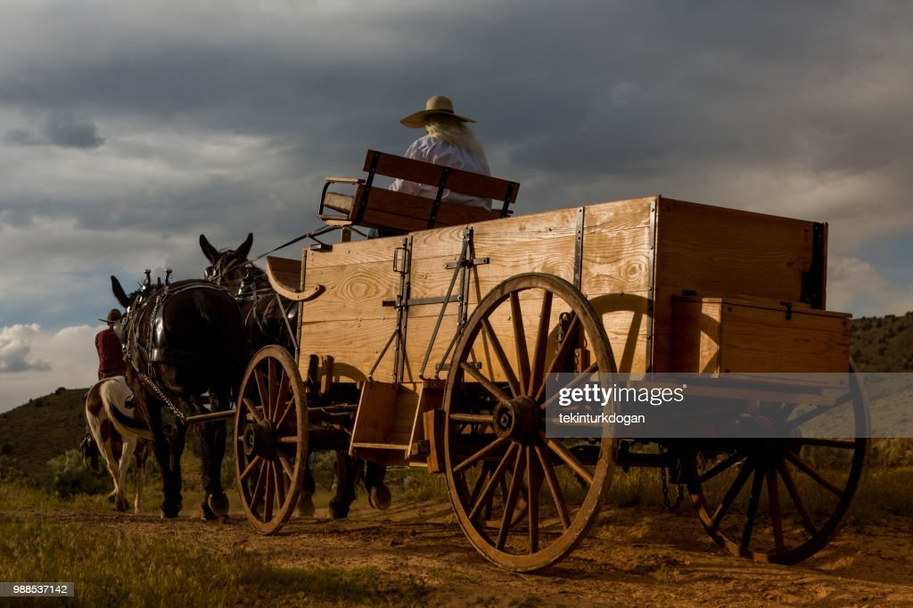 horse carriage at santaquin valley of Salt lake City SLC Utah USA : Stock Photo