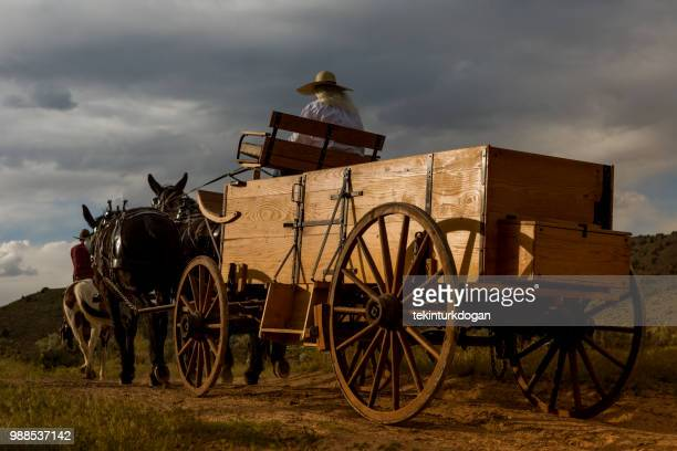 paard en wagen op santaquin vallei van salt lake city slc utah usa - koets stockfoto's en -beelden