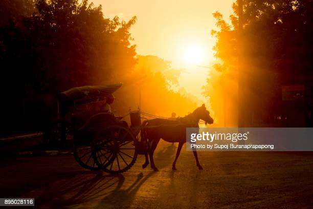 Horse carriage at the Bagan Archaeological Zone,Beautiful sunset scene of horsecart in Bagan, Myanmar