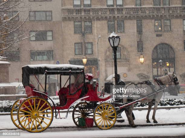 Horse Carriage in Central Park Winter