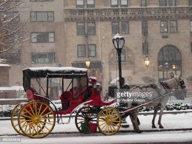 horse carriage in central park winter - koets stockfoto's en -beelden