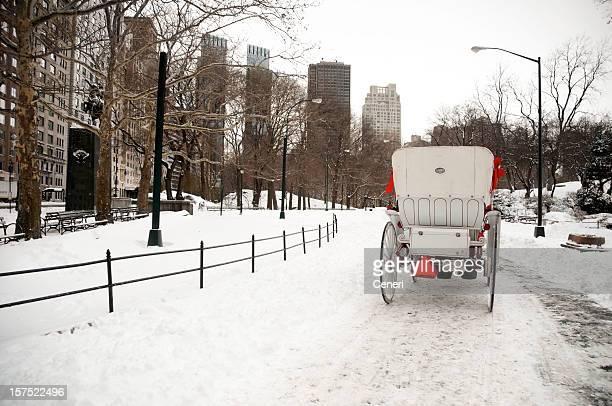 pferdekutsche im winter wonderland (manhattan, new york, usa - new york weihnachten stock-fotos und bilder
