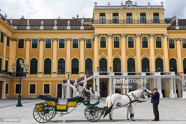 Horse & Carriage, Palais de Schonbrunn, Vienna,