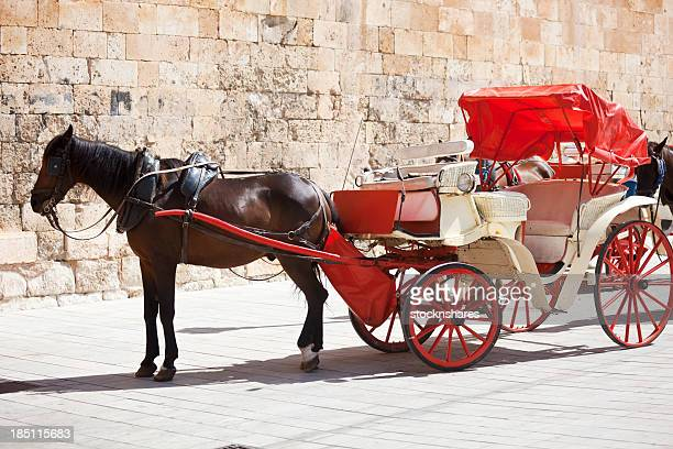 Horse & Carriage Palma Majorca