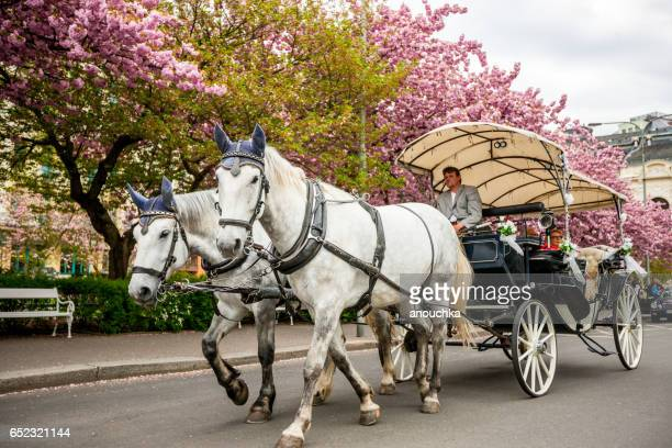 Horse carriage with tourists in Karlovy Vary, Czech Republic
