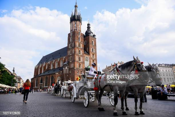 Horse carriages are seen with St Mary's Basilica at the background at the Main Square Krakow is the second largest city in Poland and it is located...