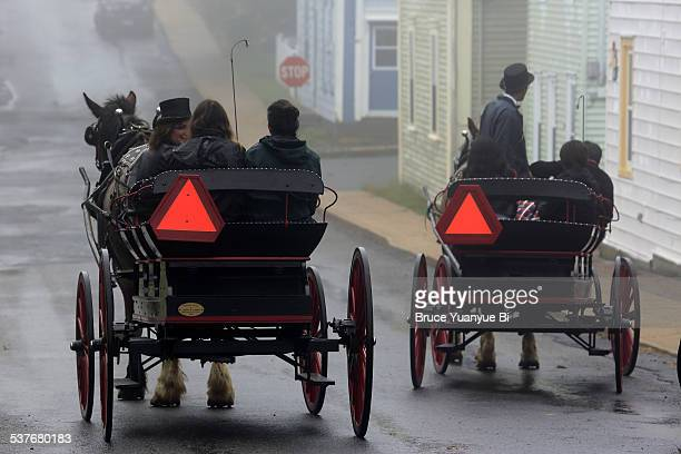 Horse carriages on the foggy street